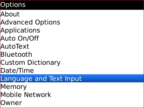 Options screen with Language and text input highlighted