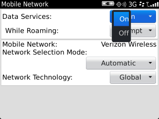 Mobile Network with Data Services setting