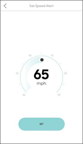 Set speed alert