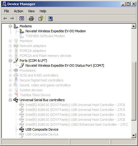 Windows Device Manager con dispositivos instalados